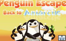 Penguin Escape