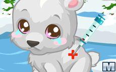 Polar Bear Care