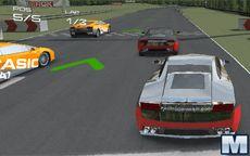 Training Race