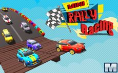 Mini Rally Racing